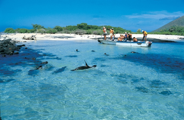 Pinzon Island & La fe Beach –  Day Tour – $ 140.00 USD (Wet suite and snorkel gear included)